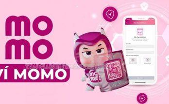 Ví điện tử momo là gì?