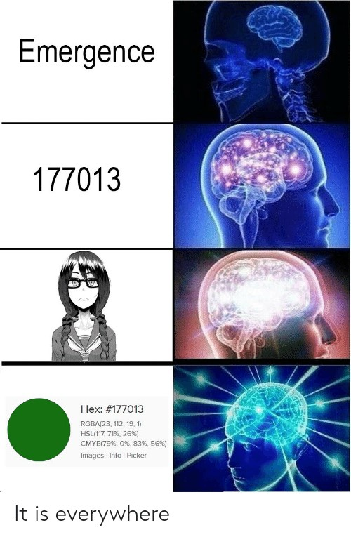 Meme 177013