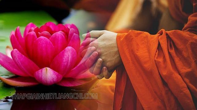 Tìm hiểu định nghĩa Hoa rơi cửa Phật là gì?