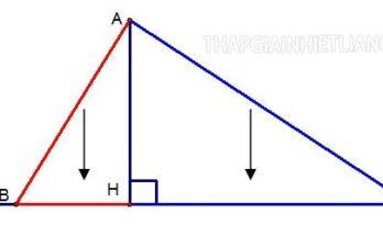 Hình chiếu trong toán học